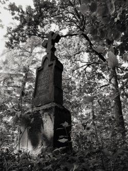 Jakub Sakowicz - Cmentarz prawosławny w Wyrykach-Adampolu (4)