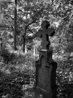 Jakub Sakowicz - Cmentarz prawosławny w Wyrykach-Adampolu (5)