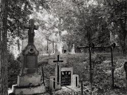 Jakub Sakowicz - Cmentarz prawosławny w Wyrykach-Adampolu (6)