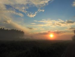 Jakub Sakowicz - Zachód słońca – nad rzeką Hanką