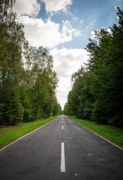 Maja Adamczyk - Droga do Krzywowierzby