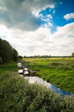 Maja Adamczyk - Widok na rzekę w Suchawie