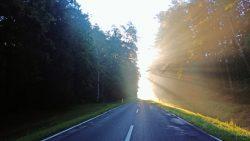 Marek Niedzielak - Droga do Włodawy o świcie
