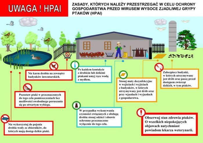 Ulotka informacyjna o HPAI